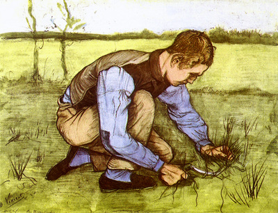 boy cutting grass with a sickle