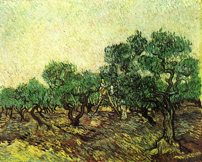 Olive Picking 1889  jpg