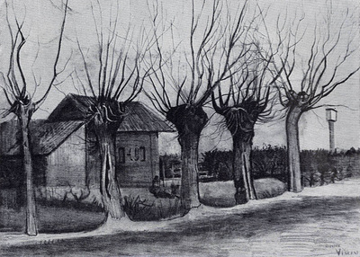 small house on a road with pollard willows