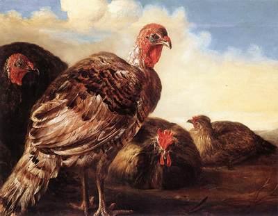 CUYP Aelbert Domestic Fowl