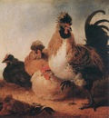 CUYP Aelbert Rooster And Hens