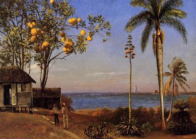 Bierstadt Albert A View in the Bahamas