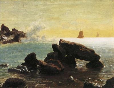 Bierstadt Albert Farralon Islands California