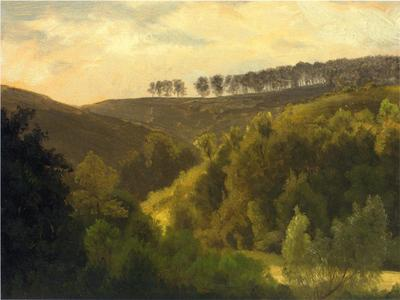 Bierstadt Albert Sunrise over Forest and Grove