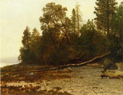 Bierstadt Albert The Fallen Tree