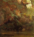 Bierstadt Albert Ferns and Rocks on an Embankment