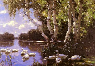 Koester Alexander Elf Enten Unter Birken Und Im Wasser