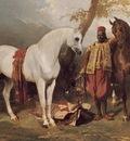 The Mounts of Abd El Kader