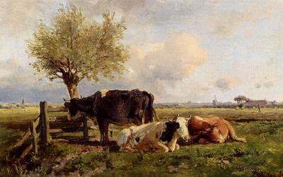 Mauve Anton Resting Cows