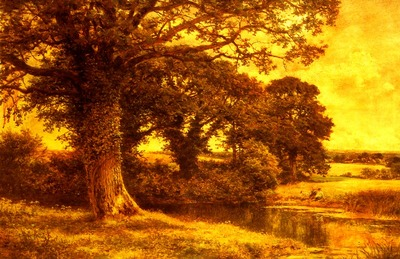 Leader Benjamin Williams A Woodland Pool