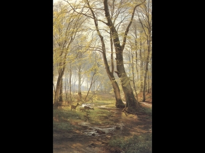 A Woodland Scene With Deer2