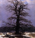 FRIEDRICH Caspar David Oak In The Snow