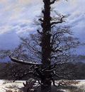 FRIEDRICH Caspar David The Oaktree In The Snow