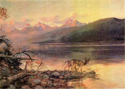 Russell Charles Marion Deer at Lake McDonald