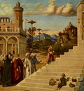 CIMA da Conegliano The Presentation Of The Virgin