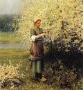Knight Daniel Ridgway Spring Blossoms