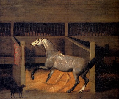 Sartorius Francis A Dappled Grey In A Stall