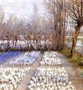 Hitchcock George Spring Crosuc Fields