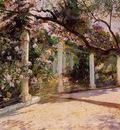 Almond Trees Algiers