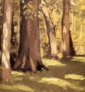 Caillebotte Gustave The Yerres Effect of Light