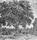 SEGHERS Hercules The Great Tree