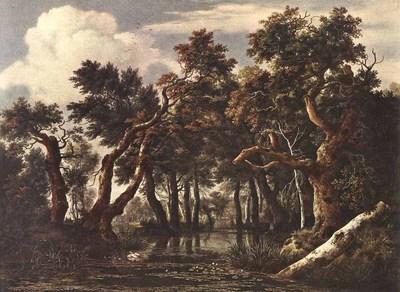 RUISDAEL Jacob Isaackszon van The Marsh In A Forest
