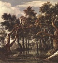 RUISDAEL Jacob Isaackszon van The Marsh In A Forest