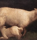 BASSANO Jacopo Sheep And Lamb