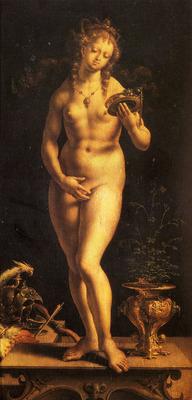 Gossaert Jan Venus And The Mirror