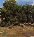 Corot Fontainebleau Black Oaks of Bas Breau