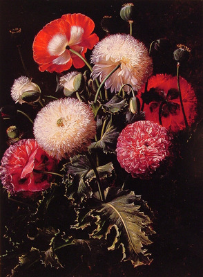 Still Life with Pink Red and White Poppies