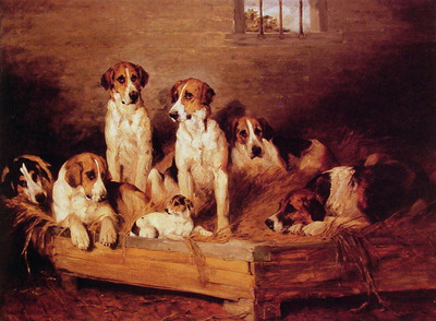 Foxhounds and terriers in a Kennel
