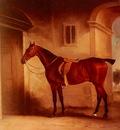 Ferneley John A Saddled Bay Hunter In A Stableyard
