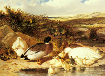 Herring Sr John Frederick Mallard Ducks and Ducklings On A River