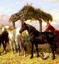Herring Jnr John Frederick Horses And Ducks By A River