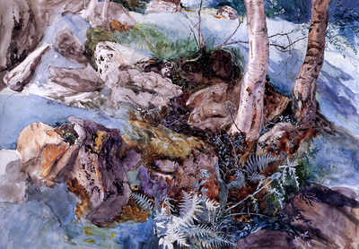 Ruskin John Study of the Rocks and Ferns Crossmouth