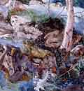 Ruskin John Study of the Rocks and Ferns Crossmouth