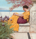 Godward Under the Blossom that Hangs on the Bough