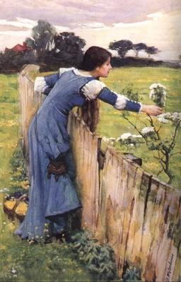 The Flower Picker JW