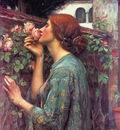 My Sweet Rose CGFA