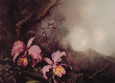 Two Orchids in a mountain Landscape