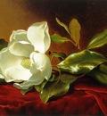 A Magnolia on Red Velvet ATC