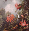 Heade Martin Johnson Hummingbird And Passionflowers