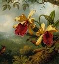 Orchids and Hummingbird ATC