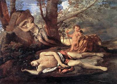 Echo Narcissus EUR