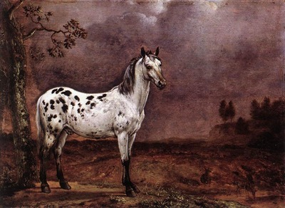 POTTER Paulus The Spotted Horse