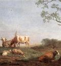 POTTER Paulus Resting Herd