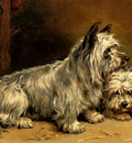 Hedley Ralph Two Terriers