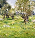 Robinson Theodore Willows and Wildflowers2