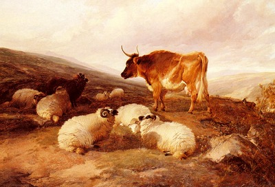 Cooper Thomas Sidney Rams And A Bull In A Highland Landscape